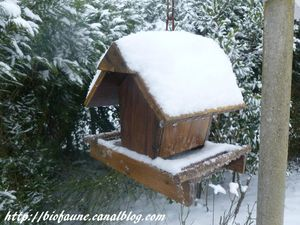 MANGEOIRE HIVER