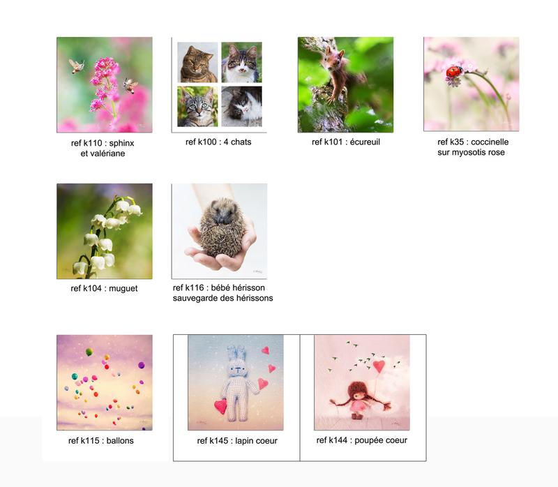 cartes-fleurs-carréesB