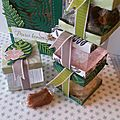 Stampin'up! boîtes à sucreries tropicales