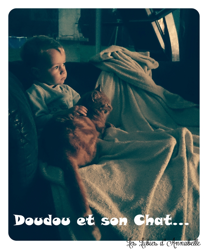 doudou et son chat