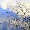 Eau pour miroir , eau et la rencontre , histoire d' o