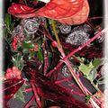 noël rouge noir 033_modifié-1