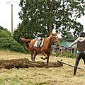 équitation de pleine nature - rallye équestre (171)