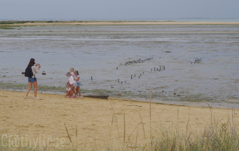 && plage Fort Royer (6)