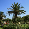 Crète Août 2007