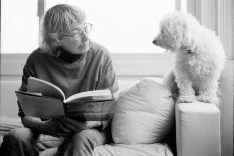 hr mary oliver