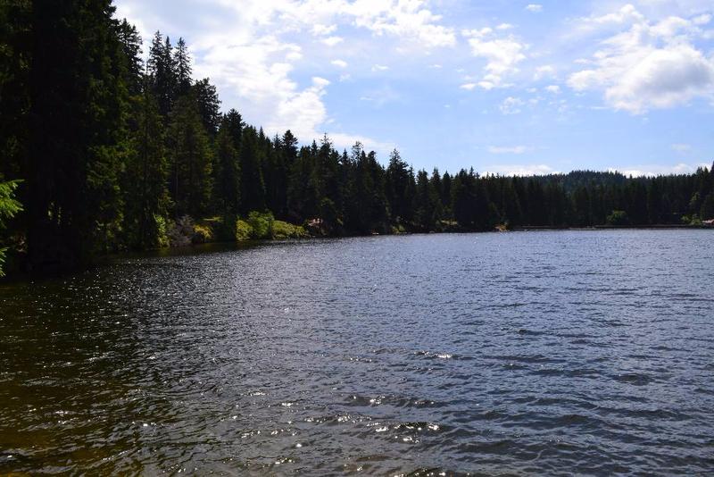 lac vert (6)