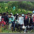 L'allemagne a perdu la trace de 600 000 migrants