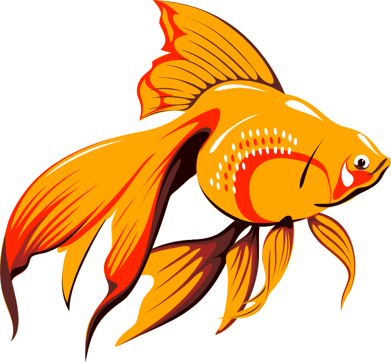 tube poissons 9