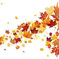 Octobre : atc automne