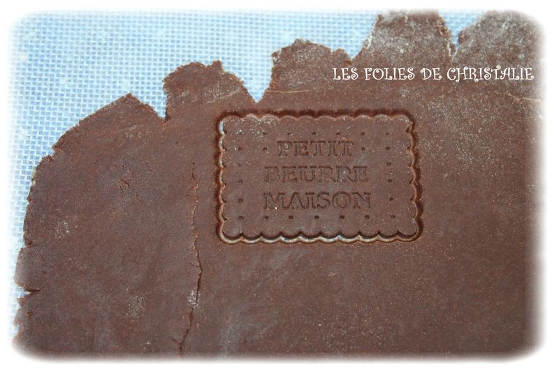 Petits beurre cacao 8
