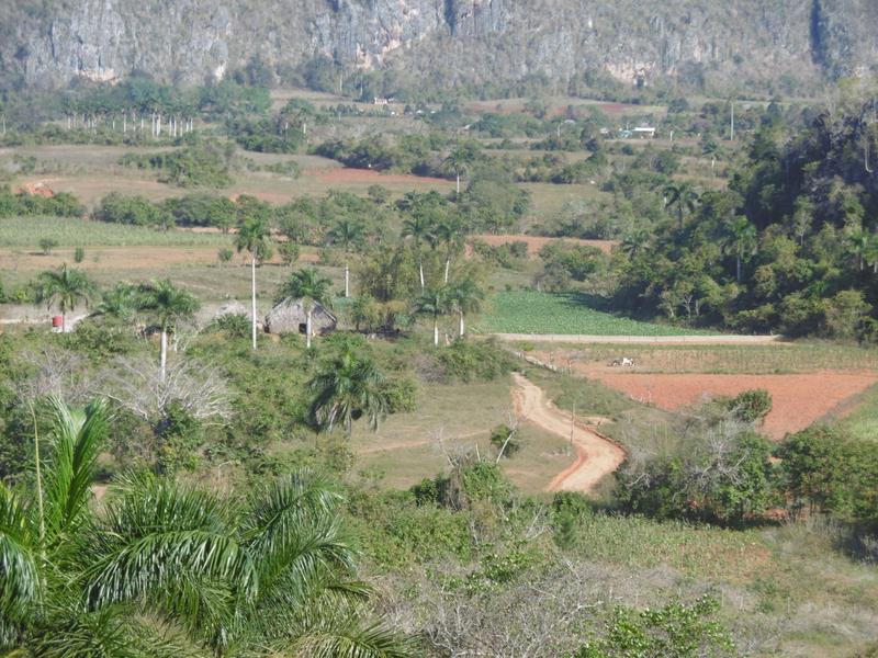 Vallée de VINALES (75)