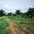 Mali et sénégal - formation agricole et rurale (3/19). les autres missions de l'agriculture.