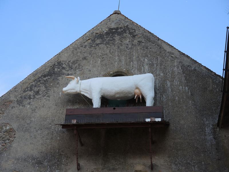 Saint-Saulge, vache sur église