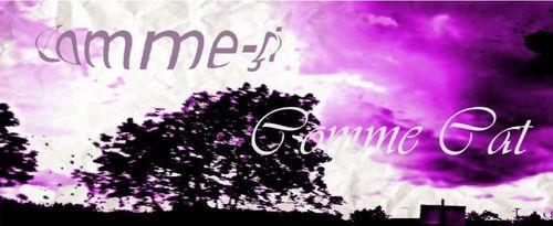 bannière violette