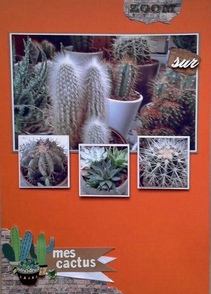 20170909 lift cactus