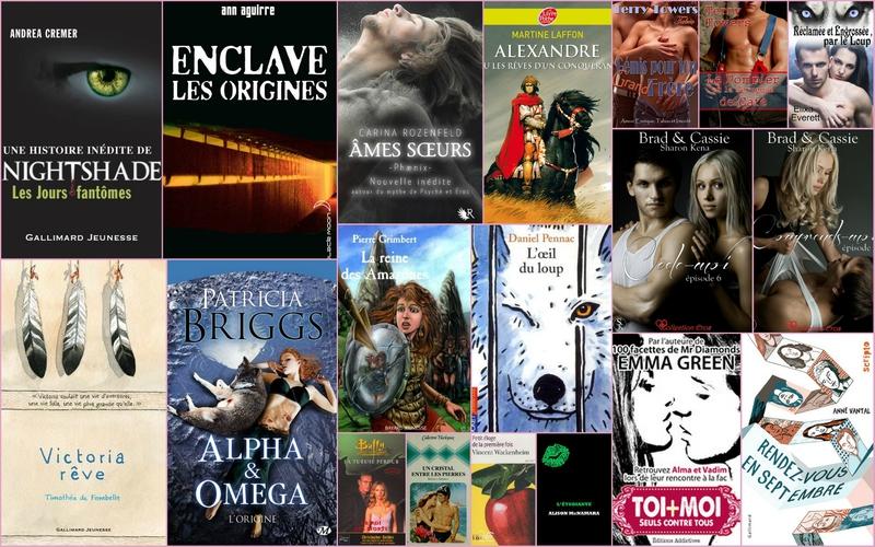 Bilan annuel littéraire6