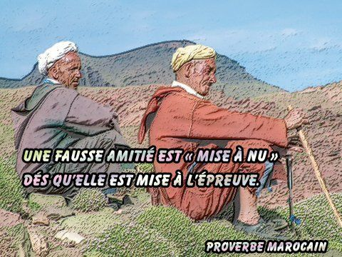 Proverbe Marocain Fausse Amitié Gifs Morphings