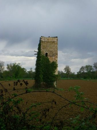 La tour d'Arcamont