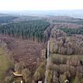 Sur le front des forêts françaises - en guerre contre la nature (vidéo)