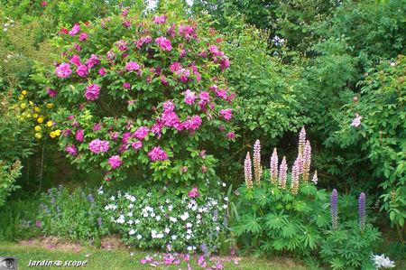 jardins_de_Roquelin_52