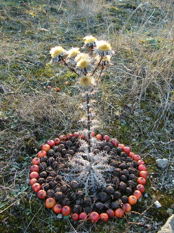 CERCLE GLACE DE DECEMBRE 2007 019