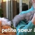 COLIBRI & sa soeur chez nos amis Odette & Pierre