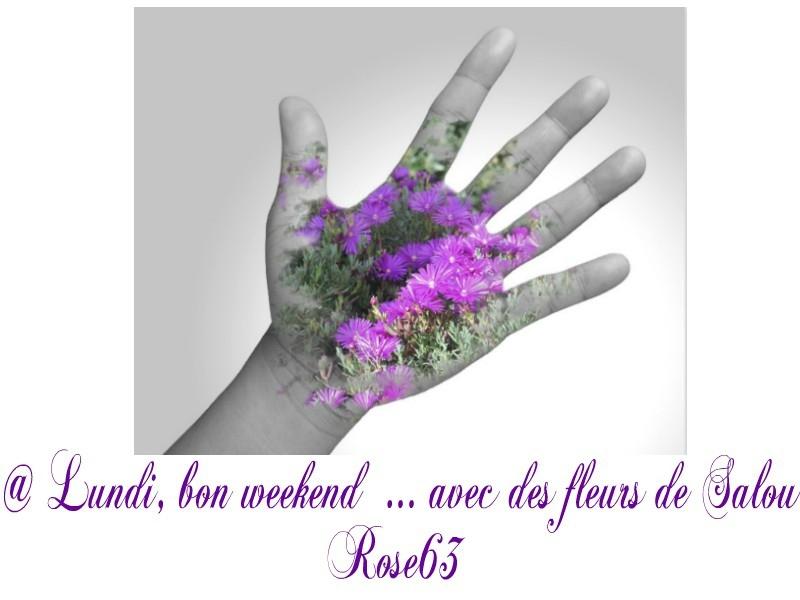 Salou fleuri Rose63