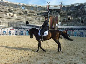 Arènes, chevaux et écuyers 23-07-2013 021