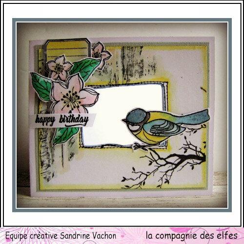 Sandrine VACHON oiseau DT LCDE (1)