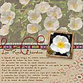 PAGE 1 copie