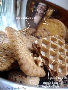 r_cup_biscuit_070908__1_