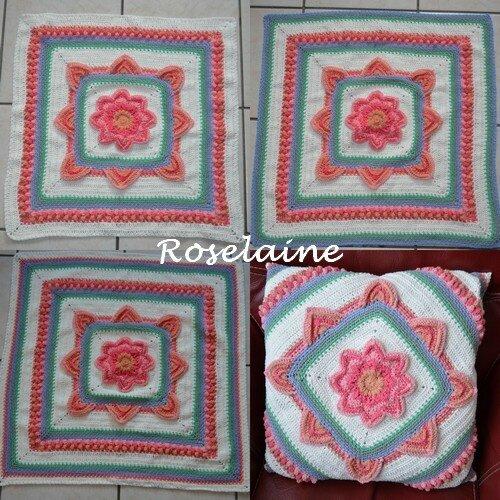 Roselaine in bloom cal 5