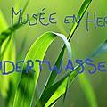 Musée en herbe - dans la peau de hundertwasser