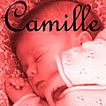 1.Camille - 2009-2011