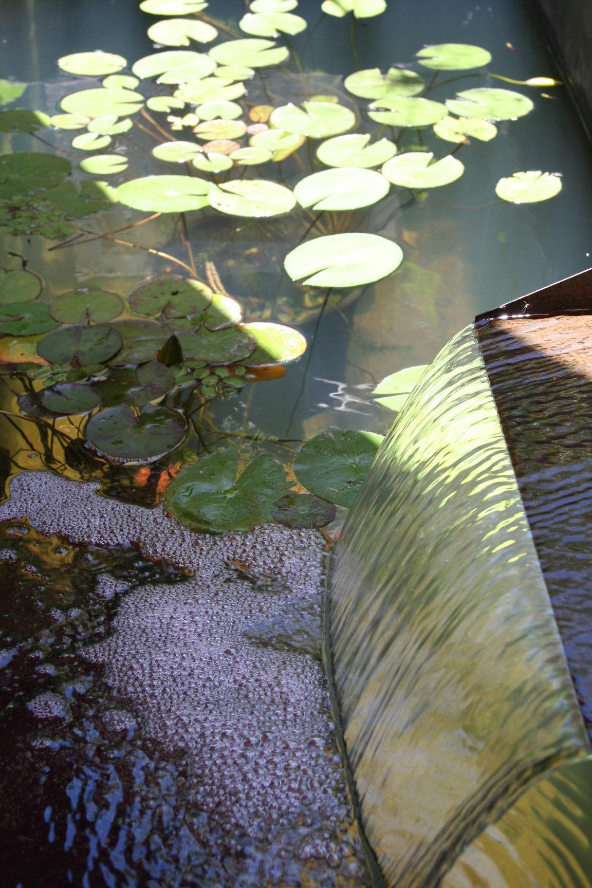 bassin couv