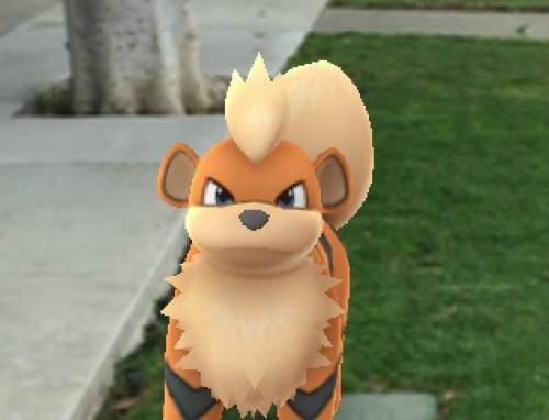 pokemon-go-police-leurre-insolite-wtf-manchester