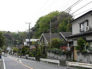 Canalblog_Tokyo03_14_Avril_2010_012