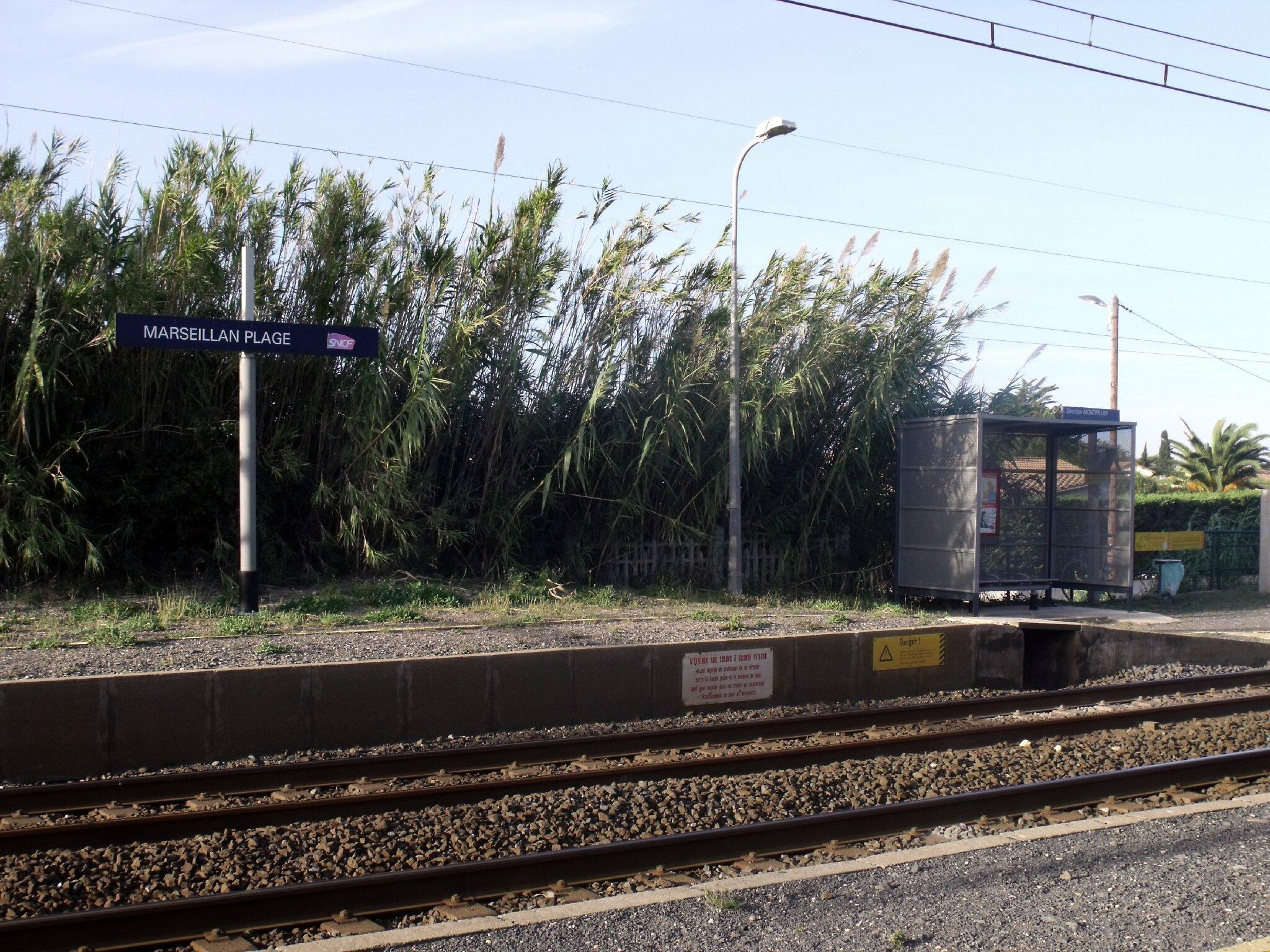 Marseillan-Plage (Hérault - 34) 2