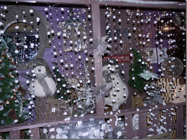 Pépinières de Bavent-10.11.2011 042