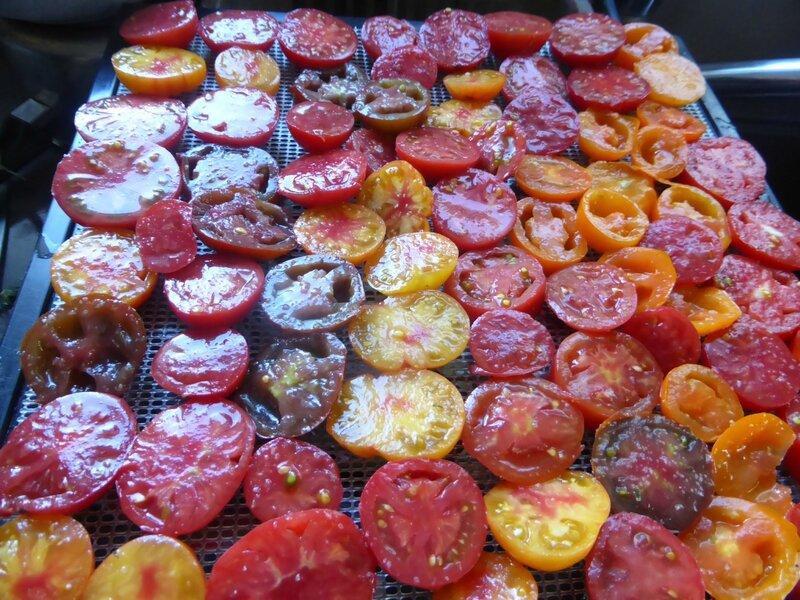 29-tomates séchées (10)