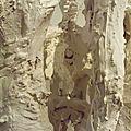 Hybrides et Chimères (44)