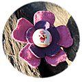 09 fleur rose