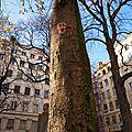 cdv_20131130_03_streetart_green