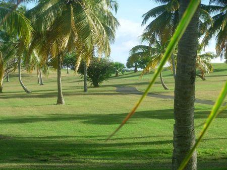DSCN0544 Guadeloupe J9