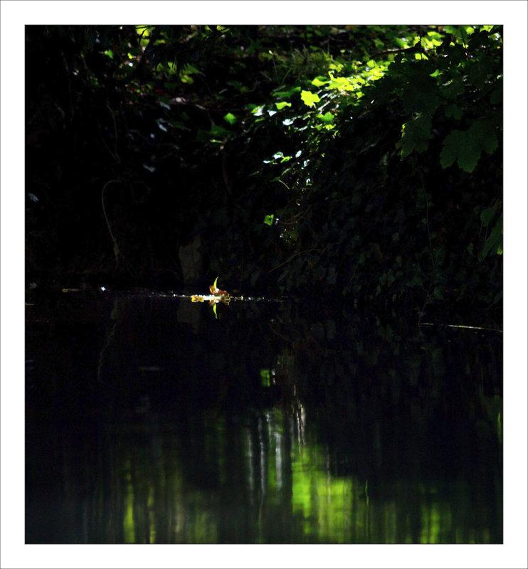 Derniers rayons soleil rivière vert 070821