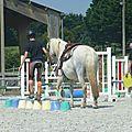 Jeux équestres manchots 2013 (296)