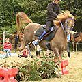 équitation de pleine nature - rallye équestre (158)
