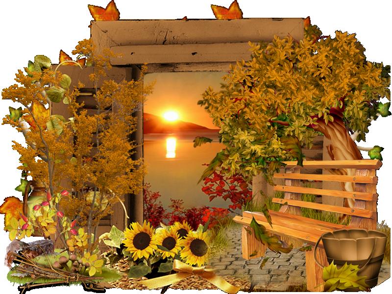 fenêtre automne