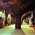 Caves-de-la-Chartreuse